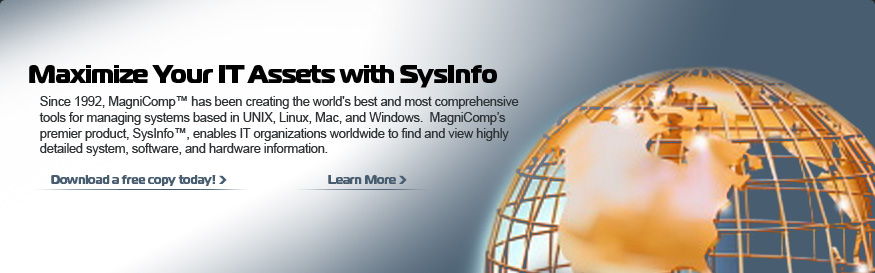 Maximize Your IT Assets with SysInfo